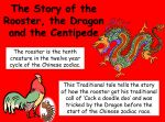 Story of the Rooster, the Dragon and the Centipede