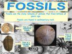Rocks & Soils Pack