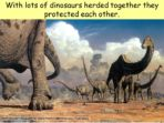 Dinosaurs – Plant Eaters