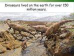 Dinosaur Mystery