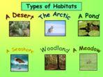 Habitats Pack