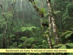 Disappearing Habitats