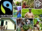 FairTrade – Information Leaflet