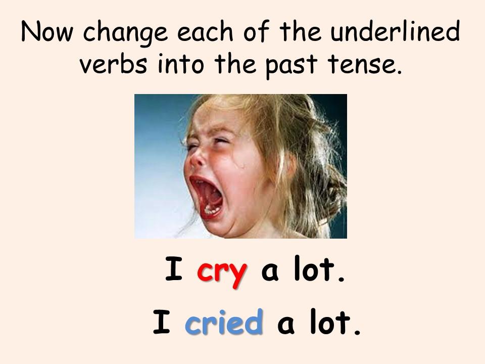 Verbs – Past & Present Tenses