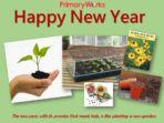New Year 2021 PowerPoints – Bundle sale