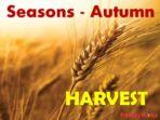 Seasons Bundle sale