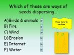 Life Cycle of a Plant Quiz